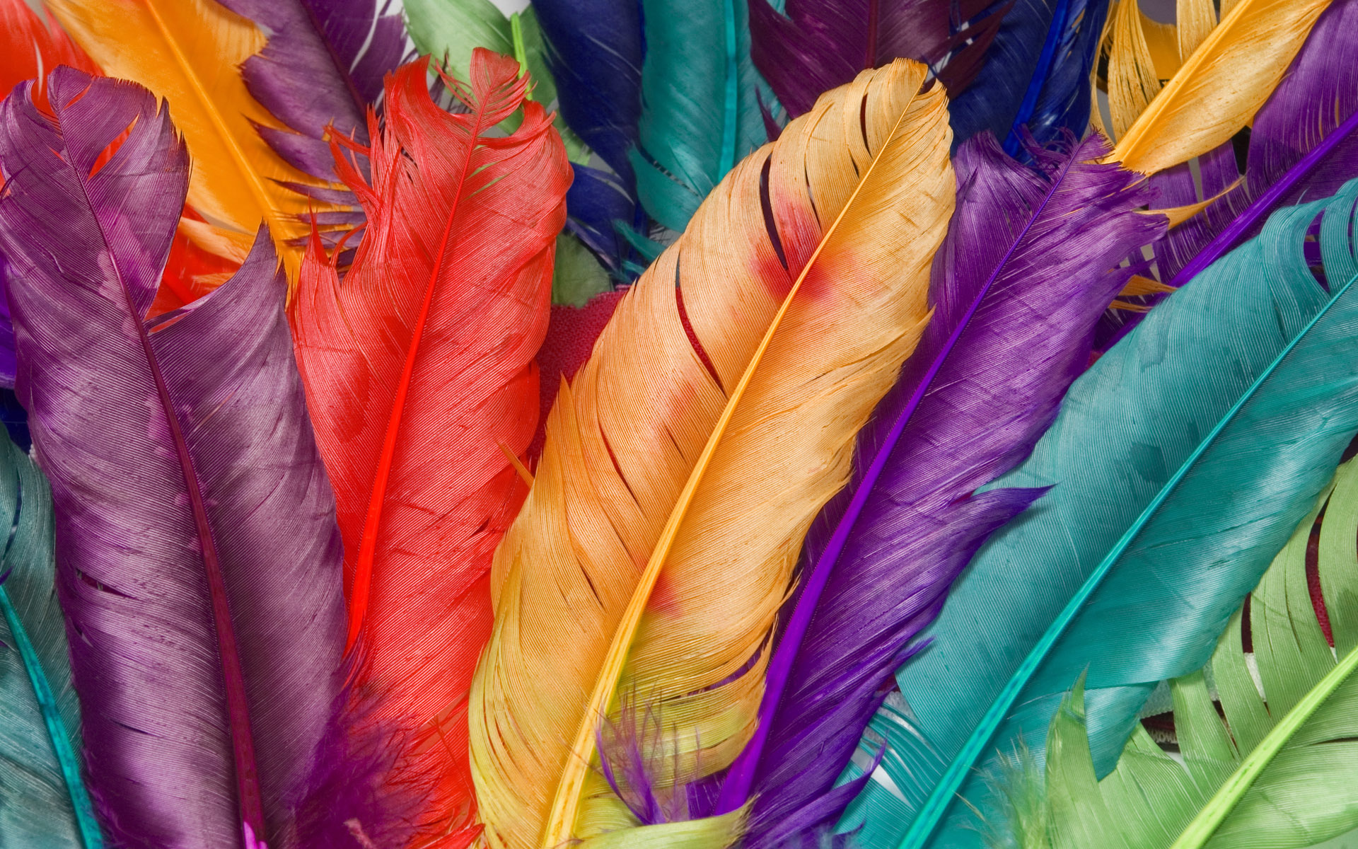colorful hd wallpaper for desktop