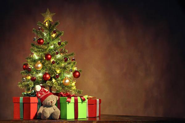 christmas teddy bear image