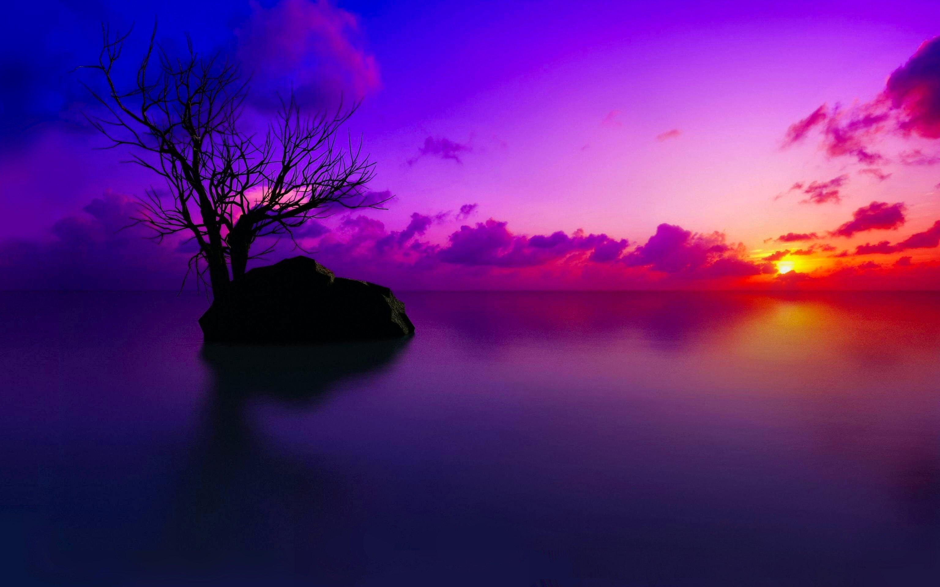 wallpaper of sunset
