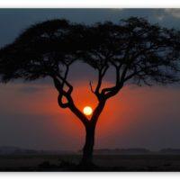 beautiful Sunset Scenery Images