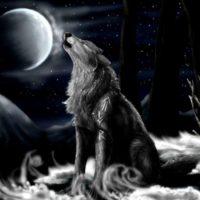 super Wolf Wallpaper