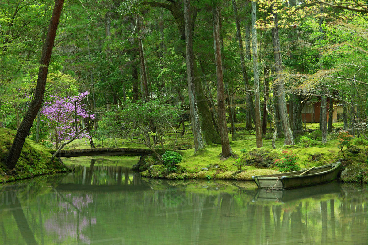 garden natural Trillium Lake Images