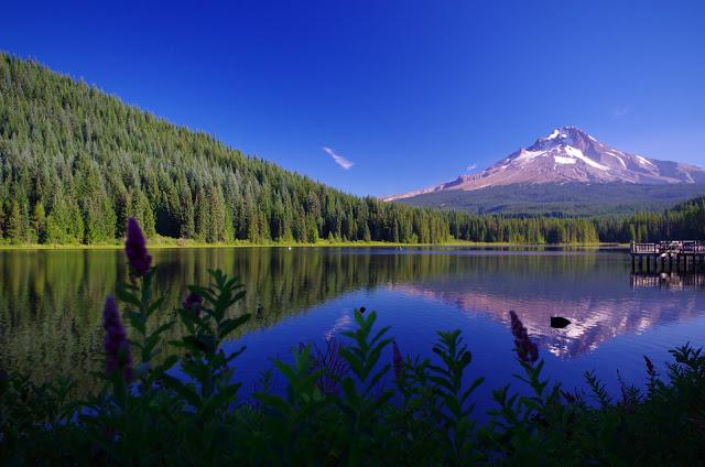 mountain natural Trillium Lake Images