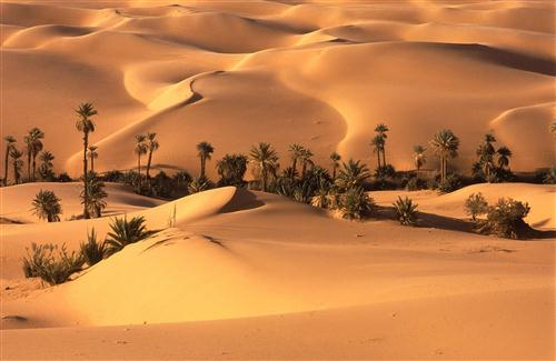 beautiful HD Desert Wallpapers