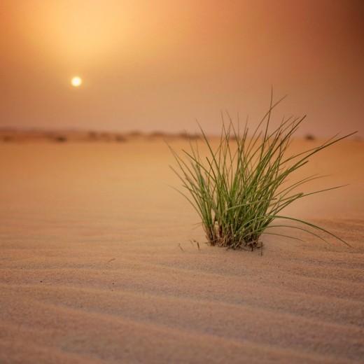 most beautiful HD Desert Wallpapers