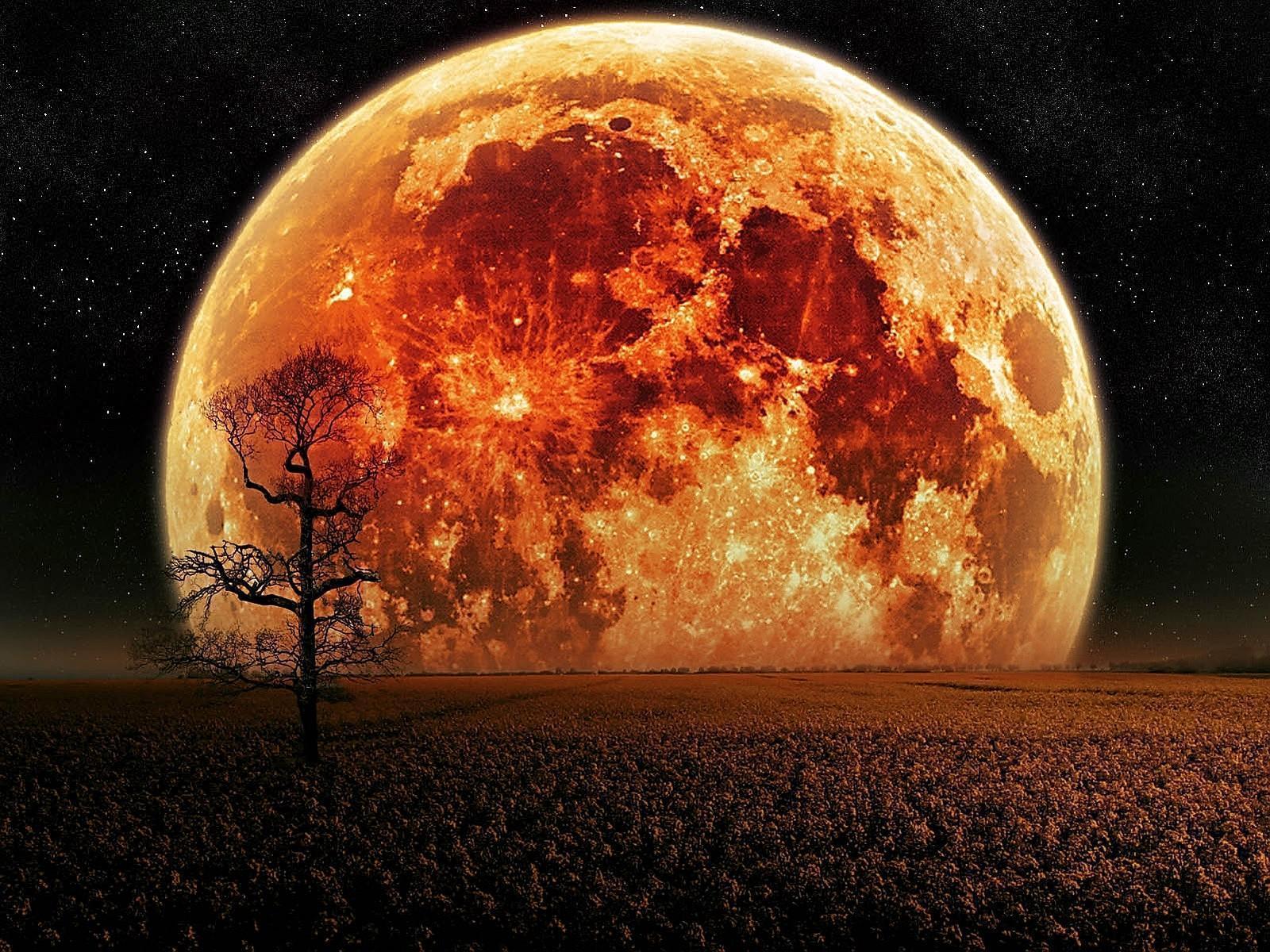 top hd Blood Moon Wallpaper