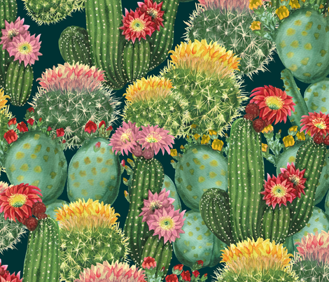 tropical Cactus Flower Wallpaper