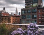 beautiful houses New York City image