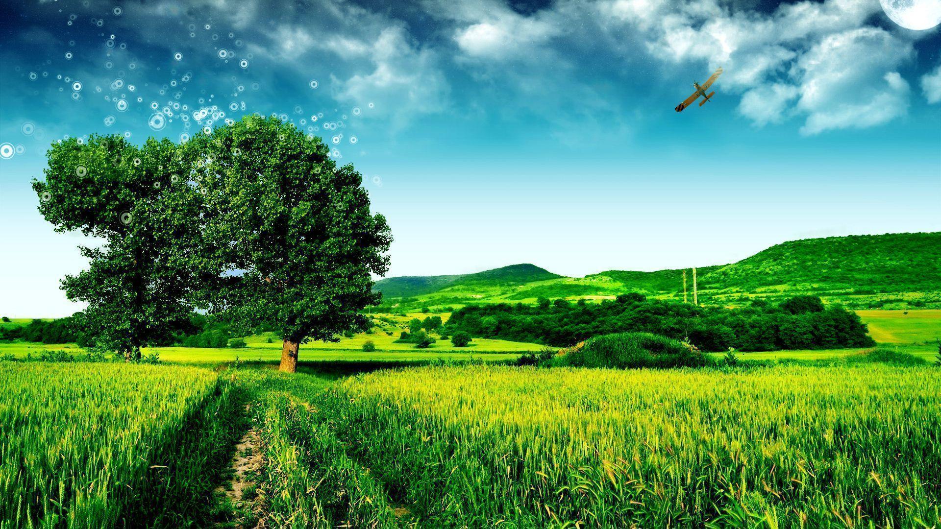 green field Landscape Wallpapers
