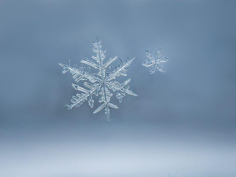 amazing Snowflakes Images