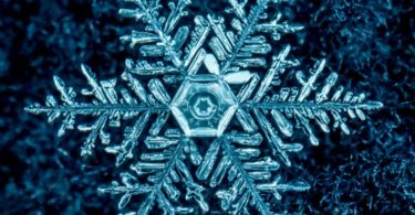 digital Snowflakes Images
