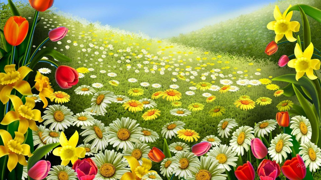 colorful flower Spring Wallpaper 4K