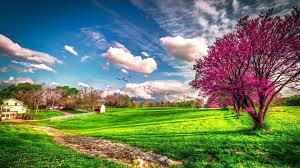 lovely weather Spring Wallpaper 4K