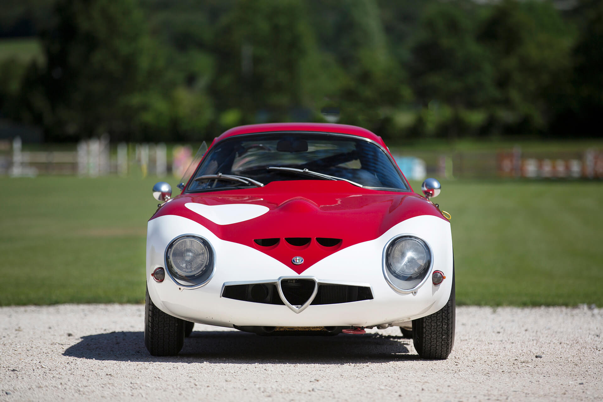 front side Alfa Romeo Zagato