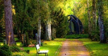 free park Wallpaper HD Nature