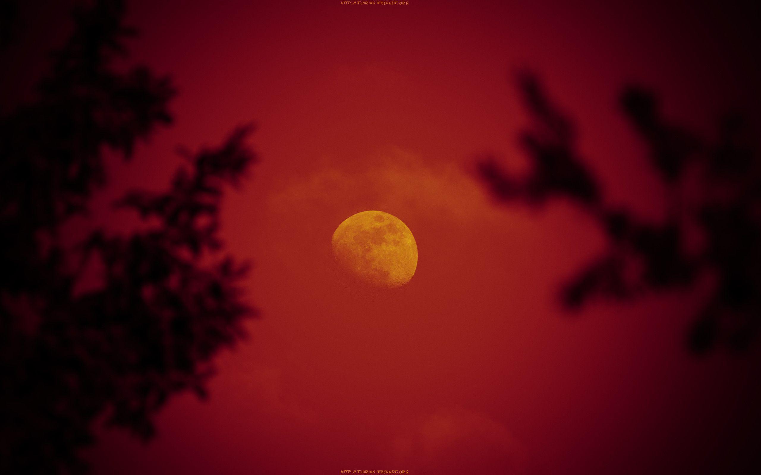 super natural Red Moon Wallpaper