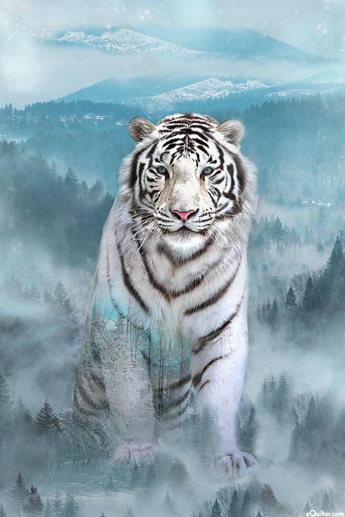 beautiful Snow Tiger Images