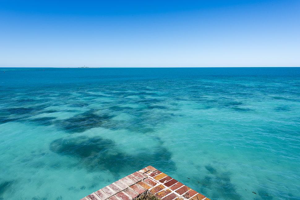 landscape pacific ocean image