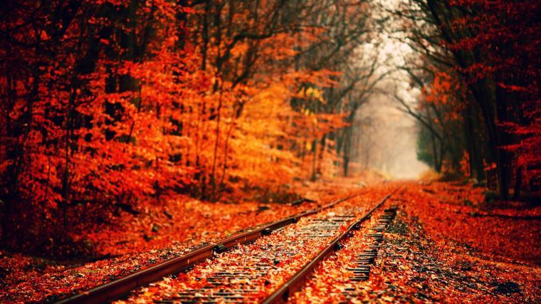 railway road best autumn image