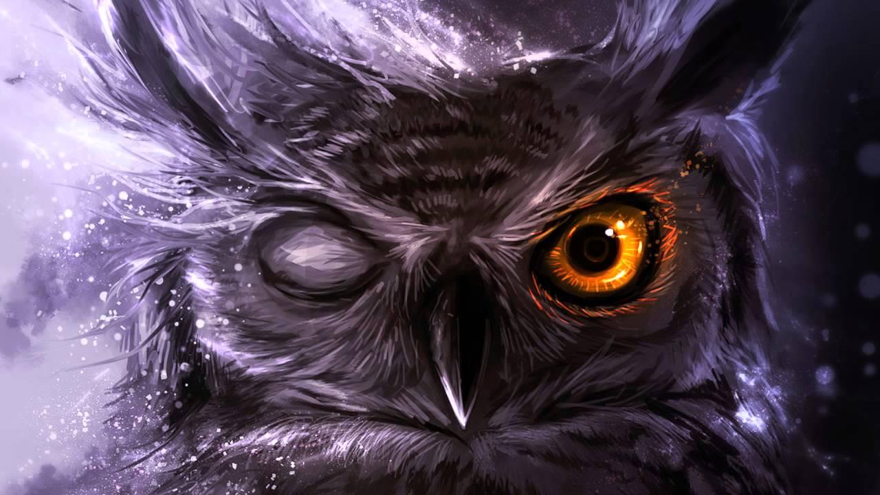 orange eyes Owl Wallpaper