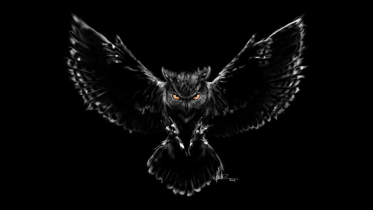 wonderful Owl Wallpaper