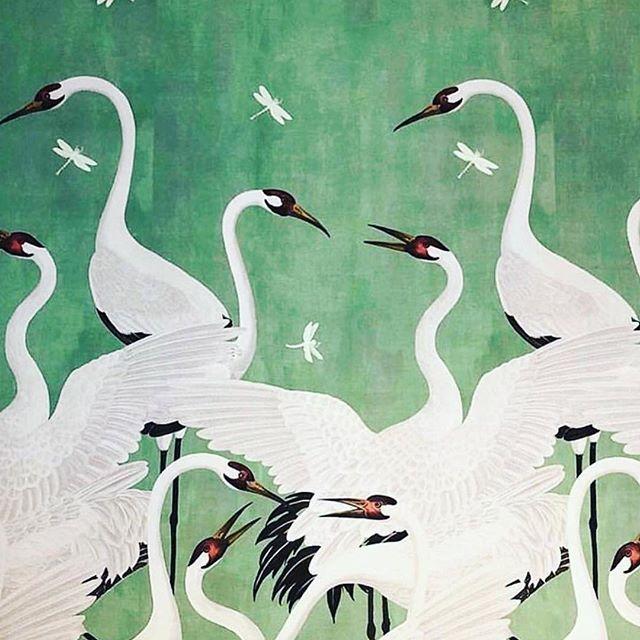 animated Heron Wallpaper hd