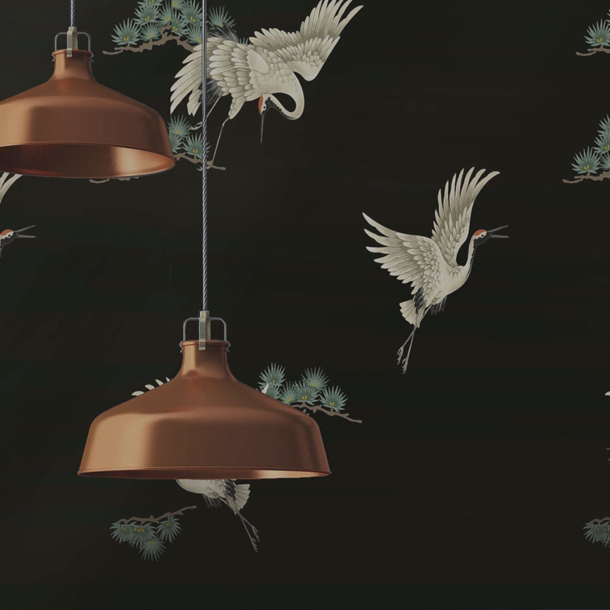 best hd Heron Wallpaper