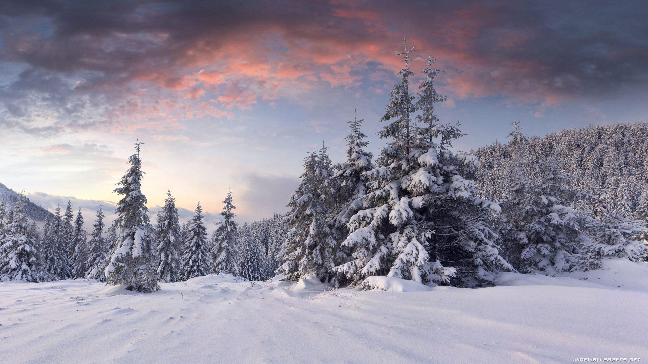 darkness clouds Winter Wallpaper 4K
