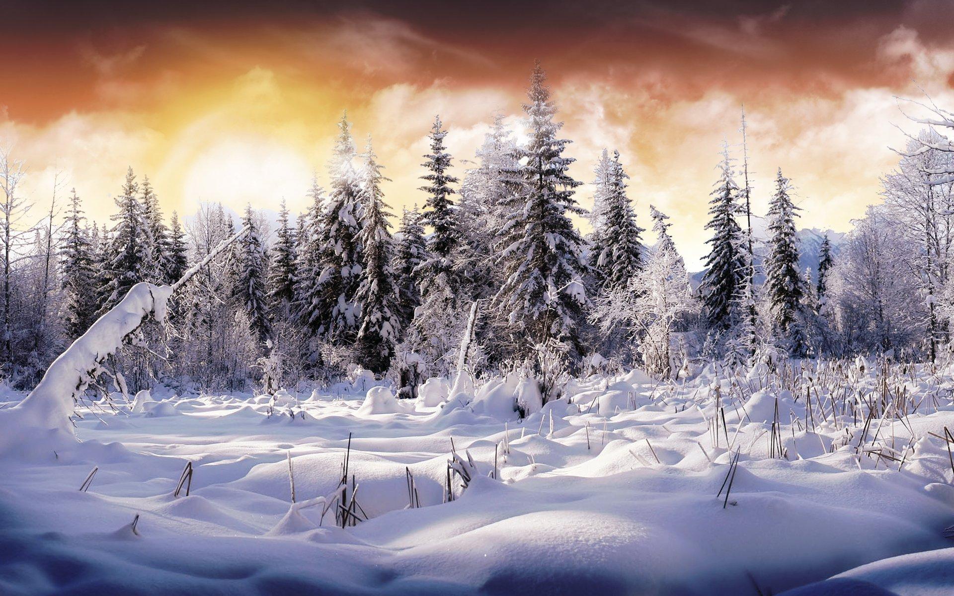 beautiful view HD Winter Wallpaper
