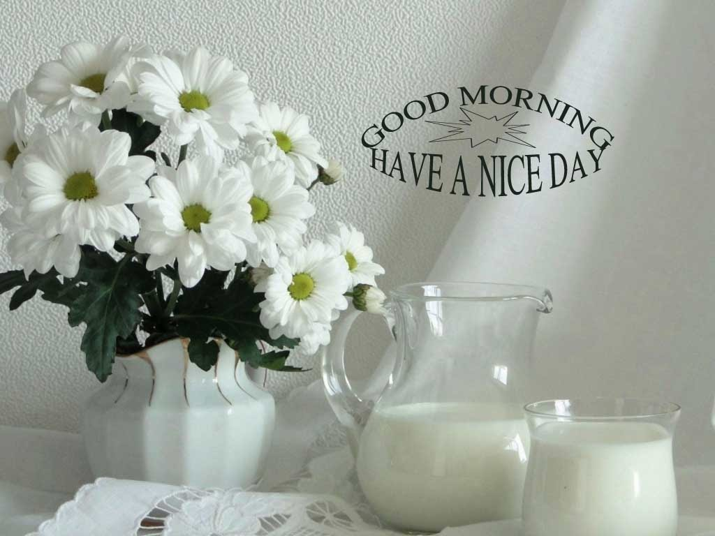 white flower good morning image