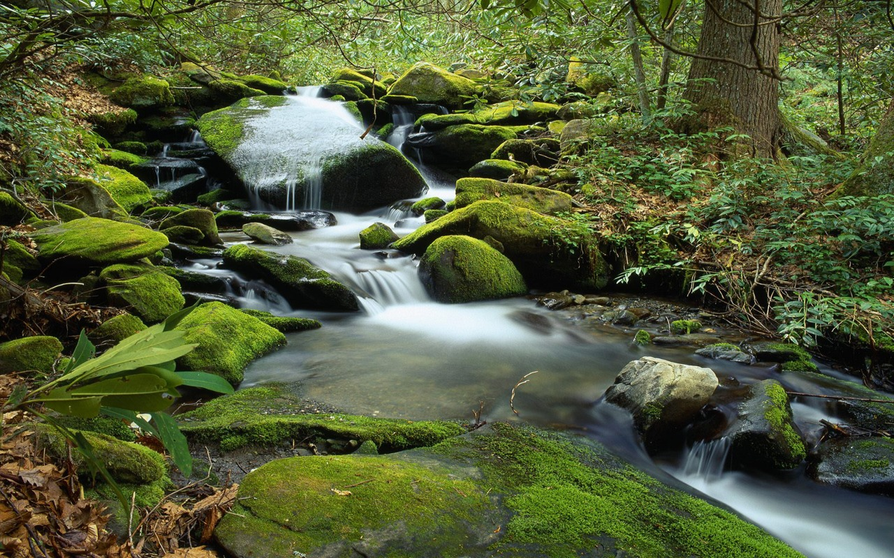 free nature Waterfall Background