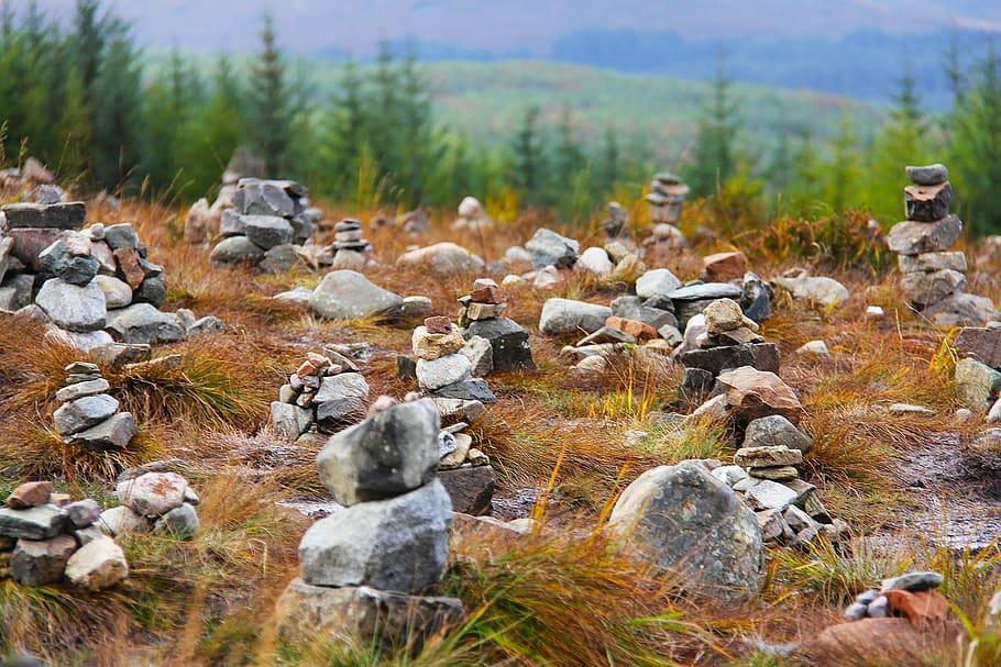 stones Fairy Glen Wallpaper