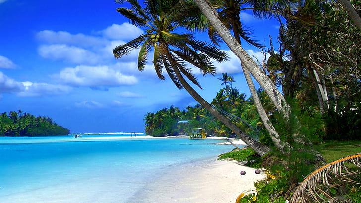 wonderful nature Cayman Island Wallpaper