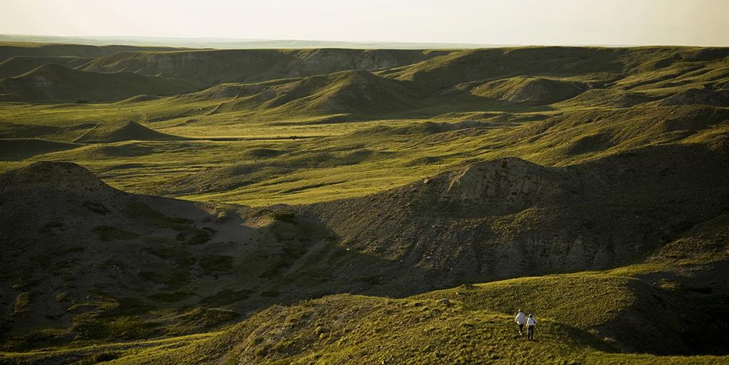 landscape Grasslands National Park