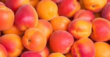 food Apricot Wallpaper