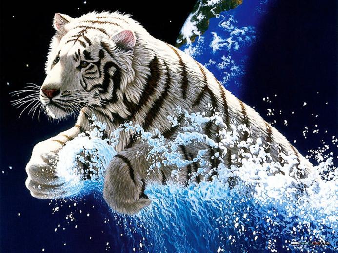 water art Tiger Wallpaper